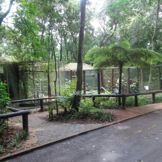 Parque Municipal Danilo Galafassi